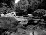 Thumbnail of The Dargle - An Irish glen - Ireland