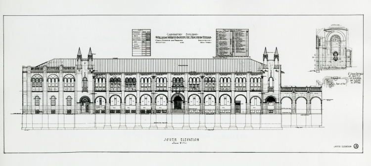 Physics building south elevation blueprint rice institute thumbnail malvernweather Image collections